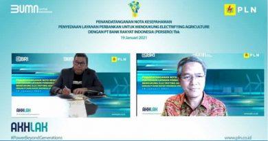 Dorong Petani Makin Produktif, PLN dan BRI Sediakan Layanan Electrifying Agriculture